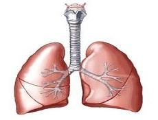 硬金属肺病症状表现