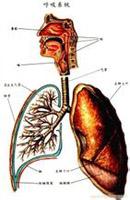 变异性哮喘
